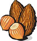 Hazelnut Almond Butter