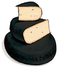 Black Betty Aged Brabander Goat Gouda Cheese