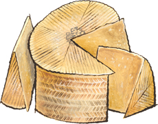 Raw Milk Manchego selected for Essex St. Cheese