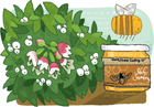 Idaho Snowberry Honey
