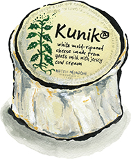 Nettle Meadow's Kunik