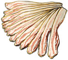 Broadbent Bacon
