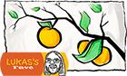 Rangpur Lime Marmalade: Lukas's Favorite