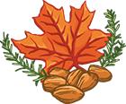 Rosemary Maple Almonds