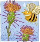 Michigan Star Thistle Honey